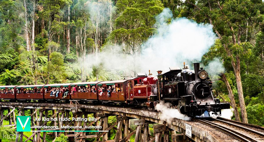 Puffing Billy train (MEL)